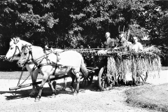 3 Horne Husmandsforening 1963 Kassevogn med høstlad