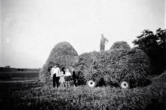 6 Kornet sættes i hæsse - Kirkevad 1952