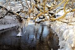 6-Vinter-ved-Kirkevad-Baek-2010