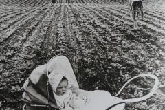 9-Udtyndning-af-roer-ca.-1950
