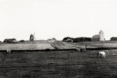 Horne-1890