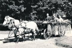 Horne Husmandsforenings vogn ved Horne I.F.s sportsfest 1963