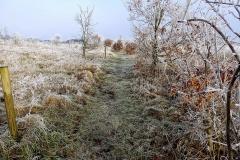 Vinterstemningsbilleder fra Vikingestien 2011 (1)