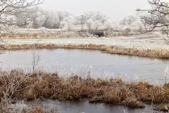 Vinterstemningsbilleder fra Vikingestien 2011 (10)