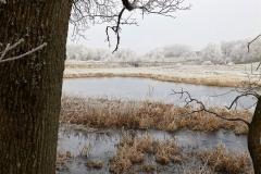 Vinterstemningsbilleder fra Vikingestien 2011 (11)