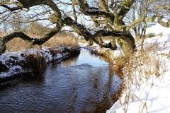 Vinterstemningsbilleder fra Vikingestien 2011 (17)