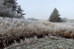 Vinterstemningsbilleder fra Vikingestien 2011 (3)