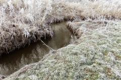 Vinterstemningsbilleder fra Vikingestien 2011 (4)