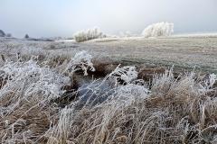 Vinterstemningsbilleder fra Vikingestien 2011 (6)