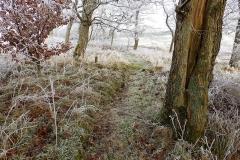 Vinterstemningsbilleder fra Vikingestien 2011 (8)