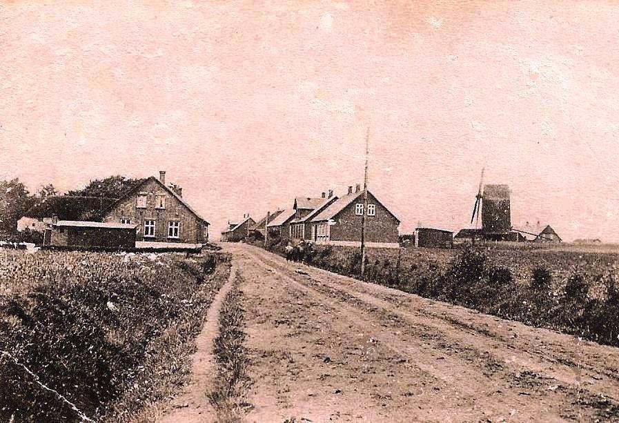 Horne 1905