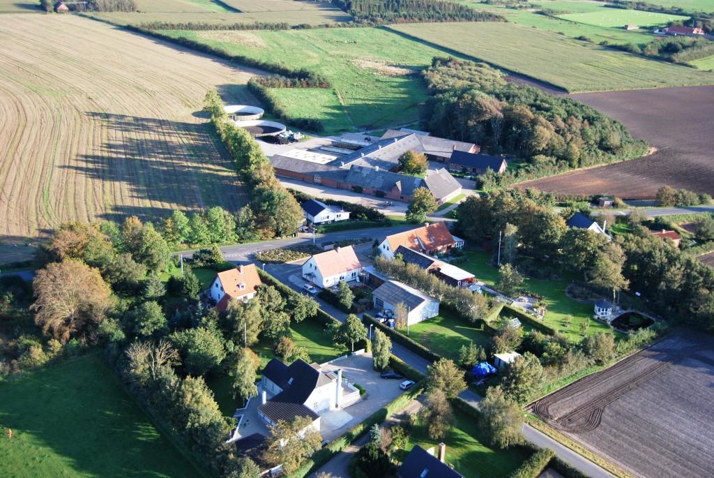 Asp set fra luften 2010